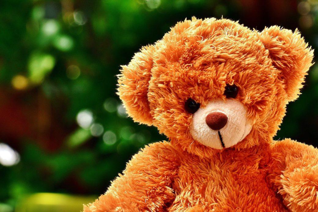 teddy-2772104_1920