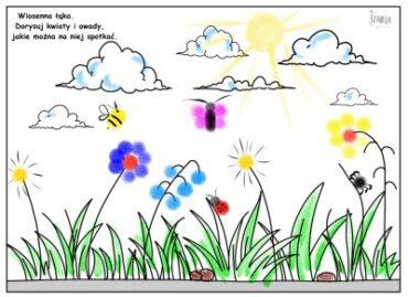 łąka kolorowa